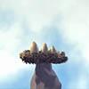 Phim hoạt hình ba quả trứng