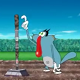 Xem phim hoạt hình Oggy và những chú gián tin nghịch tập 81 -  Cây kiếm thần